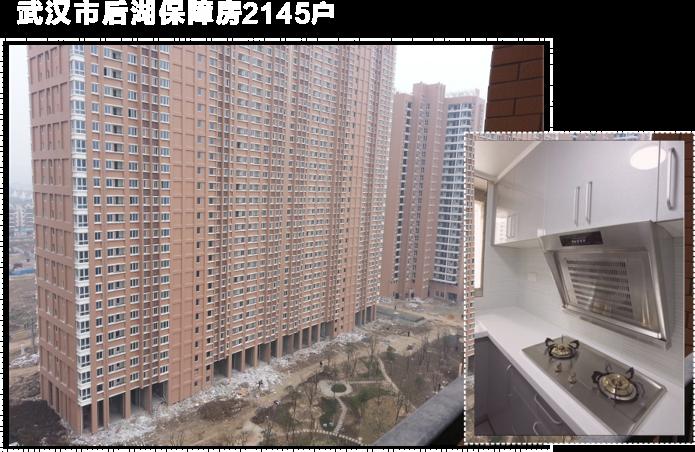 2013年承接了武汉市首保障房项目--后湖惠康居2145户
